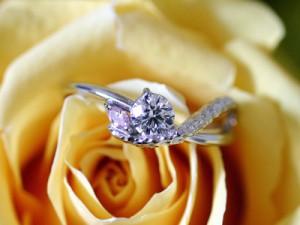 Luciole bridal 010