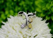 カラーダイヤモンド Luciole Collection 046