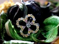 カラーダイヤモンド Luciole Collection 078