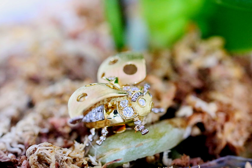 Ladybird(てんとう虫)ジュエリー02
