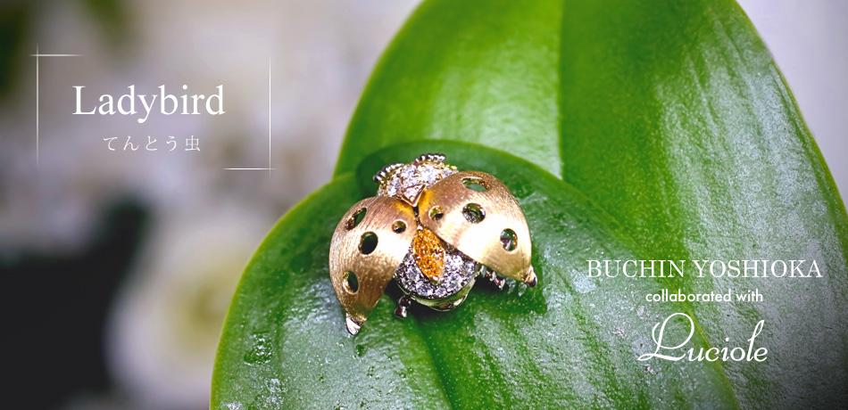 カラーダイヤモンド Ladybird(てんとう虫)