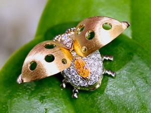 カラーダイヤモンドLuciole Collection 123